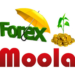 Forex Moola – reliable Forex trading software